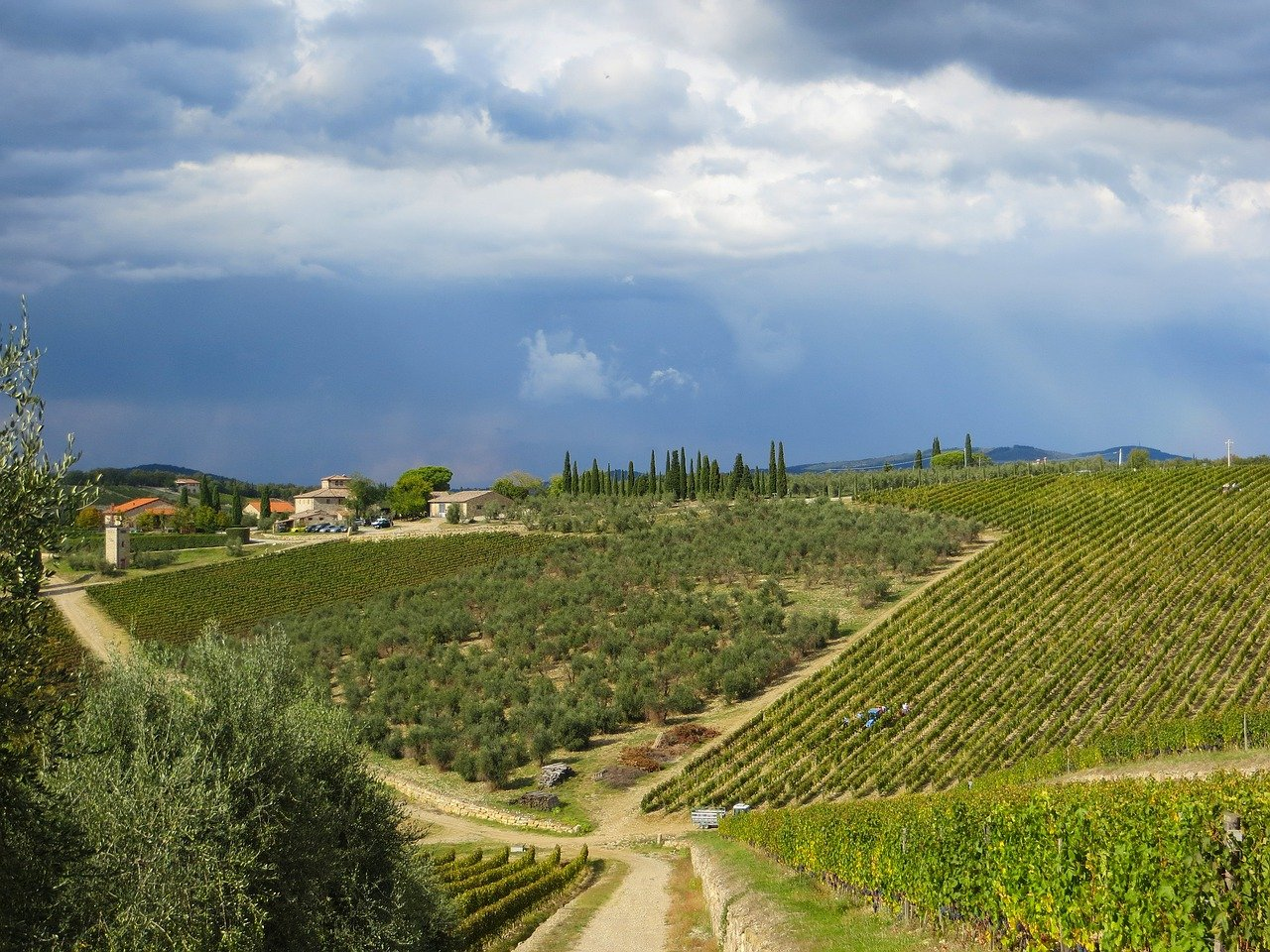 Chianti, Incrociata, Agriturismo Incrociata, Tuscan Agriturismo, Farmhouse suites, Holiday apartments Tuscany, Tuscany accommodation, Tuscan holiday home, Casa vacanza